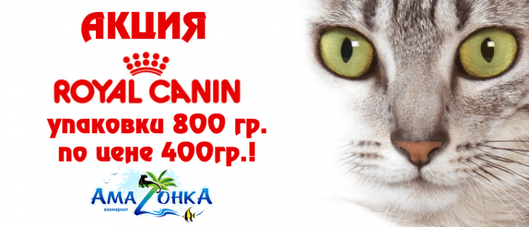 Акция от Royal Canin