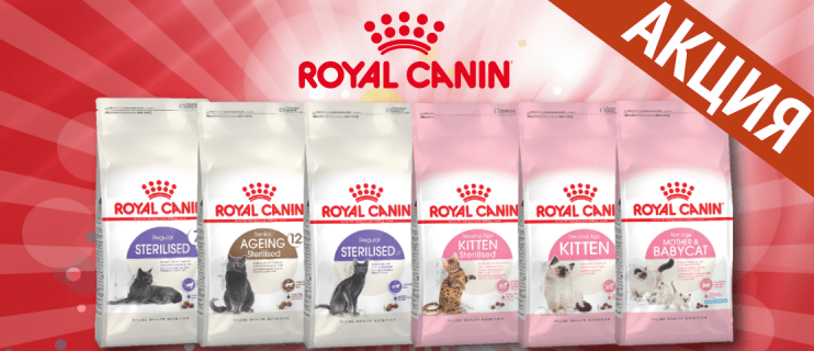 Акция на корма Royal Canin!